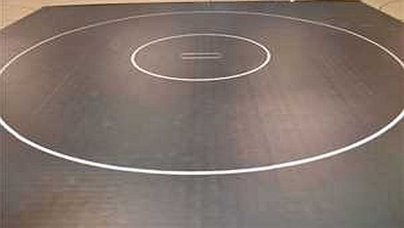 WRESTLING: Academic All-State Teams